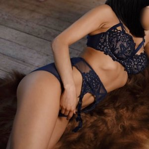 Seyda tantra massage in Fox Lake