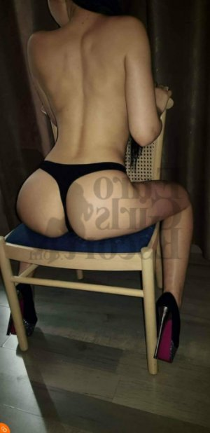 Briseis escort girls in Franklin Park & massage parlor